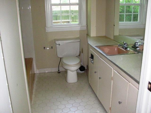 313 Armstrong 2017 Bathroom