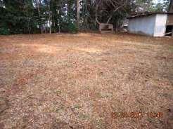 114-poplar-back-yard