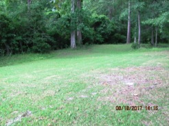 103 Woodland Rear Yard 2