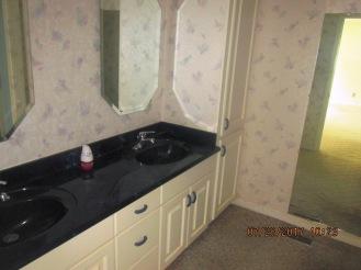 7389 Hwy 55 Master Bathroom