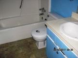 413 Forest Hills Bathroom