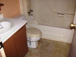 217 Village Bathroom