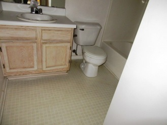 217 Lemonwood Bathroom