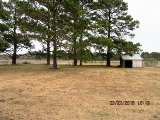 3223 Whortonsville Backyard